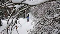 Raquetas de Nieve en Madrid