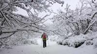Raquetas de Nieve En los valles de Hecho y Ansó.