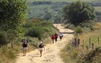 Camino de Santiago 100 km finales -Guia con Coche de Apoyo