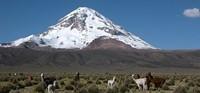 TREKKING Y ASCENSIONES EN BOLIVIA.