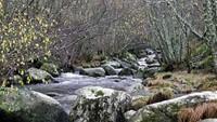 Senderismo Otoñal: Parque Natural de Redes