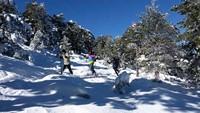 Atardeceres con raquetas de nieve