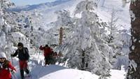 Mi primer Iglú: Aventura en la nieve