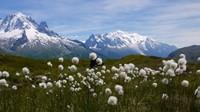 Miradores del Mont Blanc