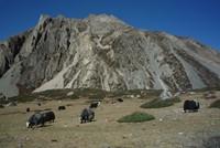 Trek en Nepal: Circuito del Annapurna -hasta Jomsom-