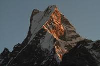 Trek en Nepal: Mardi Himal
