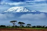 ASCENSIÓN AL KILIMANJARO (5.895 M) LA MONTAÑA MÁS ALTA DE AFRICA