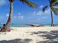 Guadalupe: la isla esmeralda del Caribe