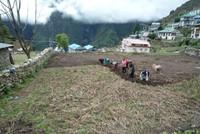 El paso de Cho-La - Trek en Nepal
