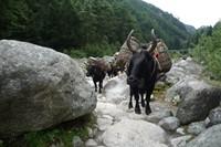 El Valle de Gokyo - Trek en Nepal